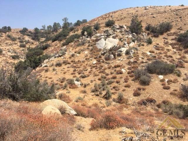 0 Piute Mountain Road - Photo 1