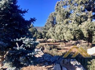 2041 Woodland Drive, Pine Mountain Club, CA 93222 (#21900553) :: Infinity Real Estate Services