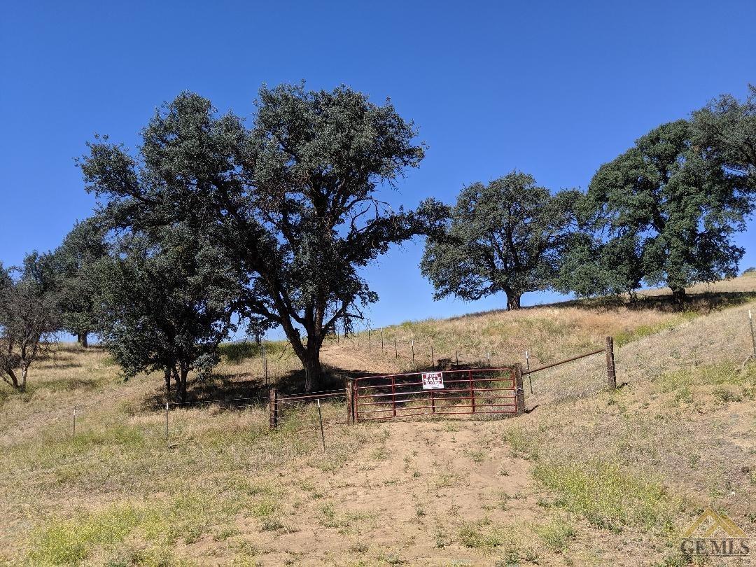 0 Caliente Creek Road - Photo 1