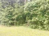124 Meadow Wood Loop - Photo 4