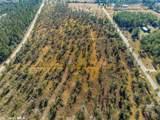 0 Osprey Lane - Photo 9