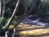 12167 Sandy Creek Dr - Photo 25
