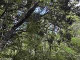 0 Cedar Hill Loop - Photo 3
