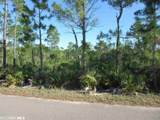 Palmetto Dr - Photo 2