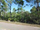 Palmetto Dr - Photo 3