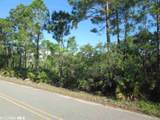 Palmetto Dr - Photo 6