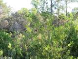 Palmetto Dr - Photo 7