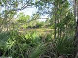 Palmetto Dr - Photo 1