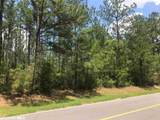 0 Old Pensacola Road - Photo 3