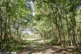 000 Anglers Trail - Photo 5
