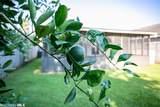 7899 Audubon Drive - Photo 36