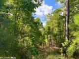 0 Old Fort Morgan Trail - Photo 11