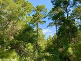 0 Old Fort Morgan Trail - Photo 12