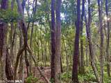 0 Old Fort Morgan Trail - Photo 18