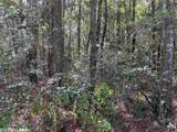 0 Longleaf Ridge - Photo 10
