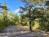 0 Chunchula Landfill Road - Photo 34