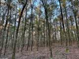 4609 Semmes  Woods Drive - Photo 3