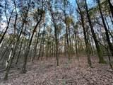 4609 Semmes  Woods Drive - Photo 4