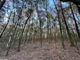 4609 Semmes  Woods Drive - Photo 6