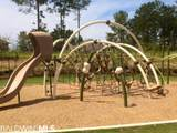 31650 Memphis Loop - Photo 18