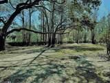 1705 Twisted Oak Cir - Photo 6