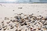 455 Beach Blvd - Photo 32