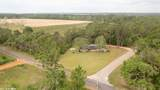 13531 County Road 9 - Photo 5