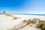 23450 Perdido Beach Blvd - Photo 39