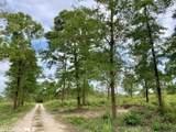 0 County Road 64 - Photo 13