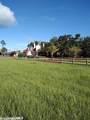 9385 County Road 91 - Photo 4