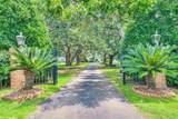 13130 Mary Ann Beach Road - Photo 2