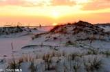 527 Beach Club Trail - Photo 50