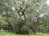0 Nettle Oak Circle - Photo 4