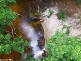 13240 County Road 54 - Photo 6