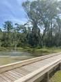0 Petiole Drive - Photo 11
