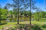 27889 Cowles Crossing - Photo 46