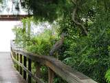 6360 Harbor Place Drive - Photo 41