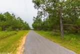 17153 County Road 87 - Photo 32