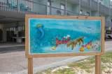 507 Beach Blvd - Photo 45