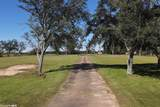 14262 County Road 87 - Photo 9