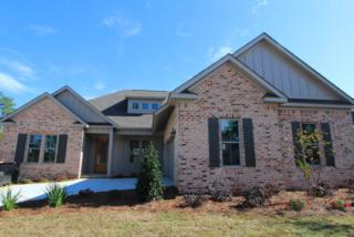 528 Boulder Creek Avenue, Fairhope, AL 36532 (MLS #248613) :: Jason Will Real Estate