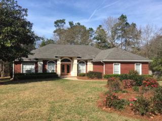 11067 Lake Circle, Daphne, AL 36526 (MLS #249782) :: Jason Will Real Estate