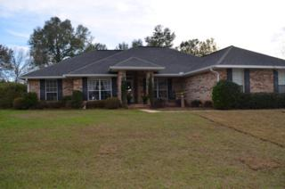 11420 River Birch Street, Daphne, AL 36526 (MLS #250339) :: Jason Will Real Estate
