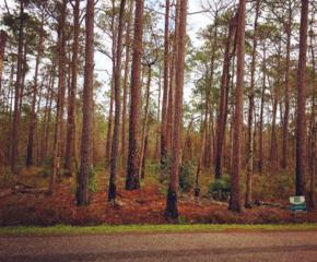 9456 S Bay Road, Magnolia Springs, AL 36555 (MLS #250495) :: Jason Will Real Estate