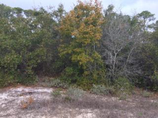0 River Road, Orange Beach, AL 36561 (MLS #250504) :: Jason Will Real Estate