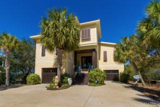 30497 Ono Blvd, Orange Beach, AL 36561 (MLS #250521) :: Jason Will Real Estate