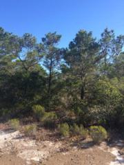 1 Oak Drive, Orange Beach, AL 36561 (MLS #250615) :: Jason Will Real Estate