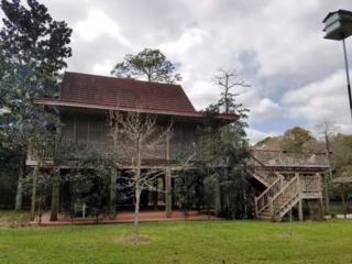 14737 Cotton Stocking Ln, Magnolia Springs, AL 36555 (MLS #250763) :: Jason Will Real Estate