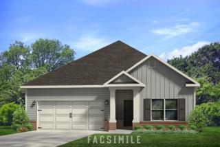 26201 St Lucia Drive, Orange Beach, AL 36561 (MLS #251209) :: Jason Will Real Estate