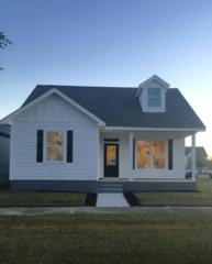 1033 Snapdragon Lane, Foley, AL 36535 (MLS #251224) :: Jason Will Real Estate